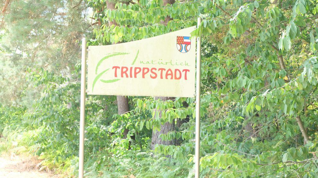 Baugrund Trippstadt