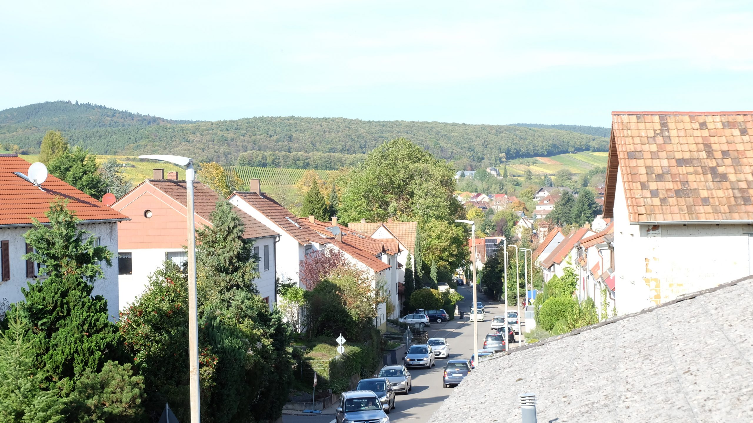 Doppelhaushaelfte_Bad-Bergzabern (53)